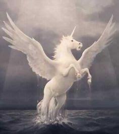 1000 Images About Mythology Greek Roman Amp Ancient World