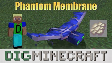 phantom membrane  minecraft survival mode