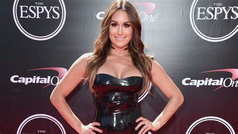 nikki bella first husband nikki bella s ex husband 5 fast facts you need to know