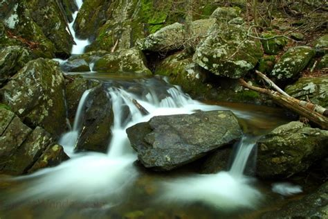 Rugged Creek by Rugged Forest Creek Springtime Creeks Streams Free Nature Pictures By Forestwander Nature