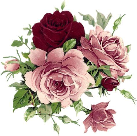 17 best images about tuscan floral on pinterest feathers 17 best ideas about vintage flowers on pinterest vintage