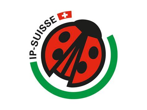 Begin Logo 18 Tshirtkaosraglananak Oceanseven rupromi swiss schwein ag startseite
