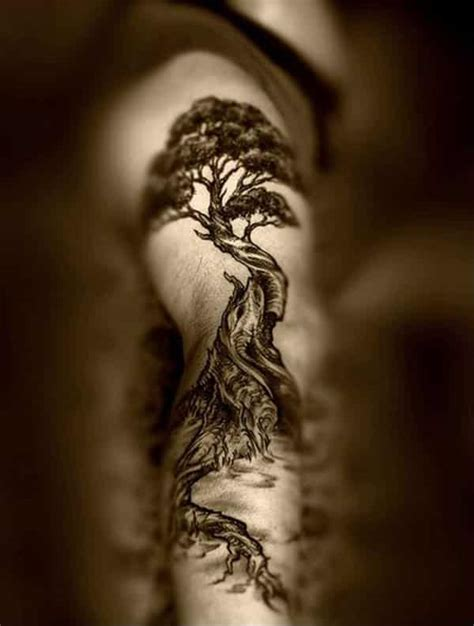 cypress tree tattoo designs tree tattoos for ideas and designs for guys