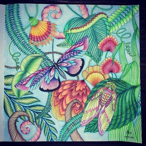libro animal tropical narrativas hispanicas mejores 28 im 225 genes de millie marotta mariposas en libros para colorear