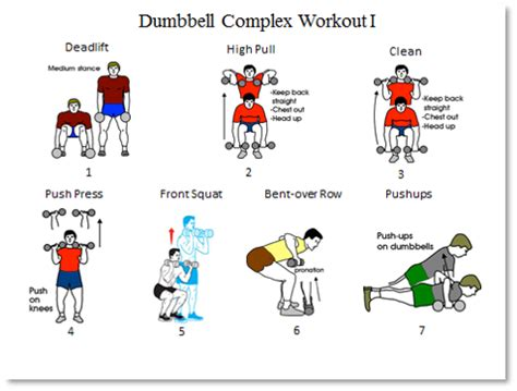 barbell complex barbell and dumbbell workout routine eoua