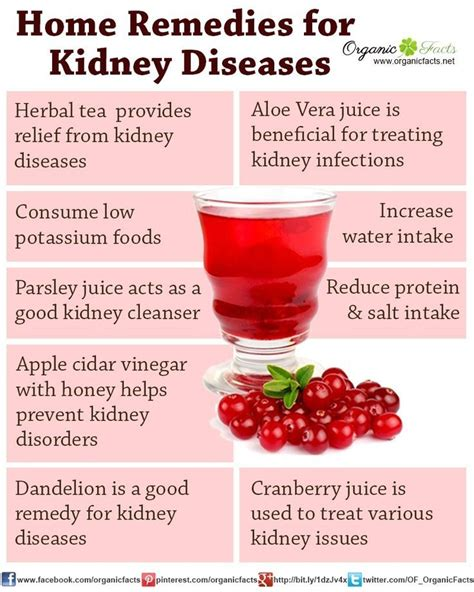 Kidney Detox Remedies by The 25 Best Kidney Infection Ideas On