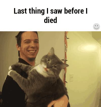Find Died I Died Gifs Find On Giphy
