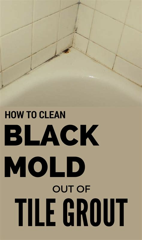 best way to clean mold from grout