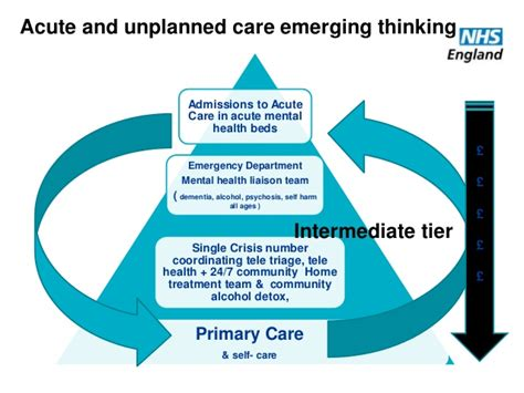 Nursing Professional Practice Models Hooper Detox by National Mental Health Programme