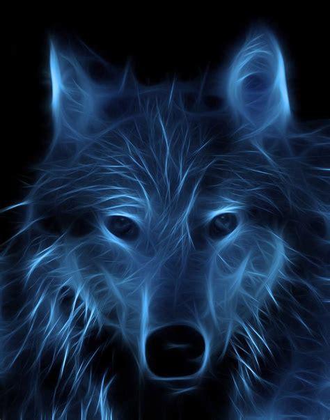 imagenes full hd de lobos fondos de pantalla de lobos en movimiento fondos de pantalla