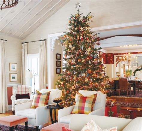 the terms best live christmas trees for decorating 10 tree decorating ideas