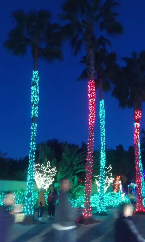florida botanical gardens lights lights in the gardens