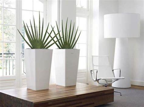 vasi per arredamento interno vasi piante vasi