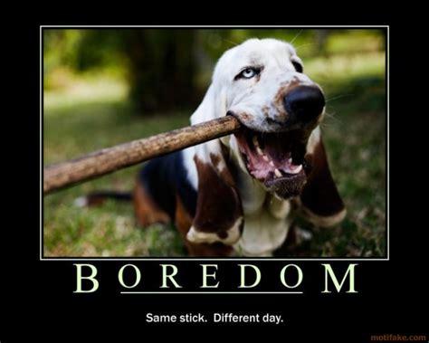 Bor Edon is beautiful the sweet taste of boredom