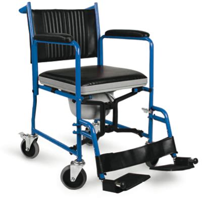 sedia comoda wc sedia comoda wc chiudibile sanitaria polaris srl