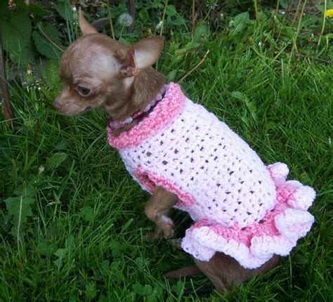 crochet pattern dog jumper 4019 best images about crochet on pinterest free pattern