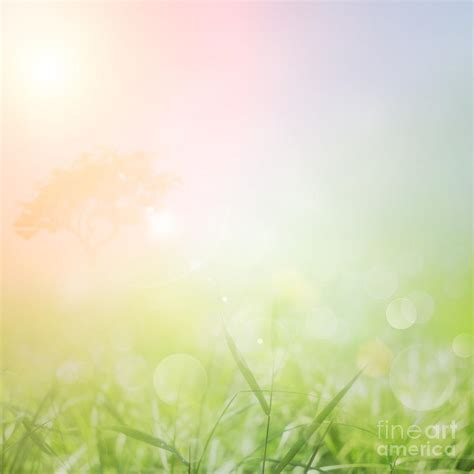 backdrop design nature the gallery for gt poster background design nature