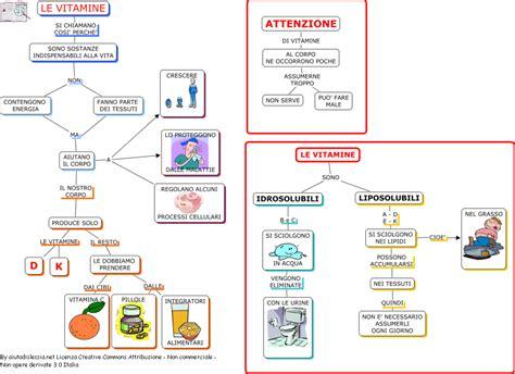 alimenti aumentano il metabolismo basale il cibo ed il corpo umano