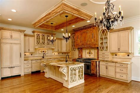 building traditional kitchen cabinets french salon living room beach style with grand tapis tropical area rugs byrneseyeview com