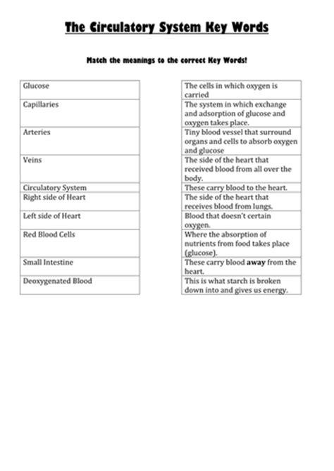 all worksheets 187 year 7 biology worksheets printable