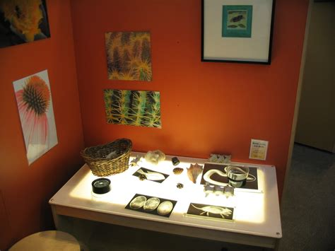 Bending Of Light Museum Notes Light Table Explorations