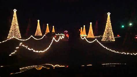 musical trees with synchronized lights santa land tree row synchronized light show