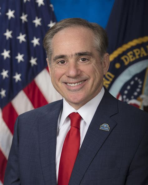 The Department Of Veterans Affairs Is A Cabinet Level Organization by David Shulkin