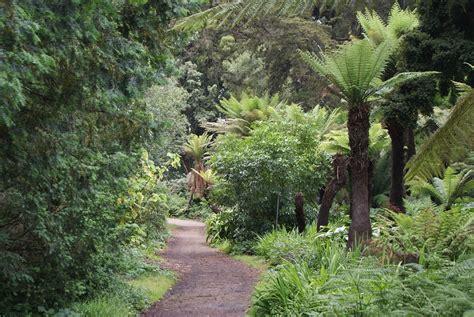 golden gate park  san francisco  son jardin japonais