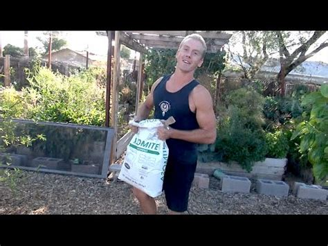 Rock Dust For Gardens 2014 Garden Update Does Azomite Rockdust Work As Well As Say Funnycat Tv