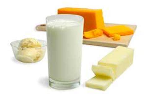 alimentos fermentados contra la intolerancia  la lactosa