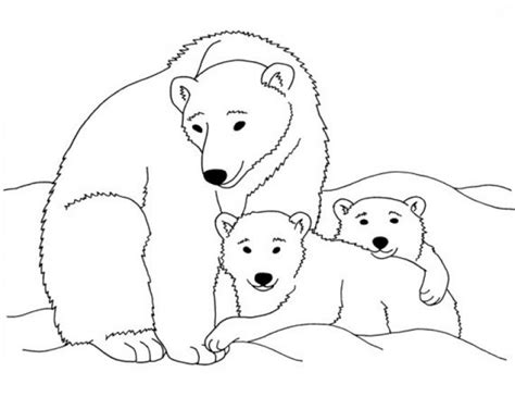 20 Free Printable Polar Bear Coloring Pages Earth Arctic Coloring Page