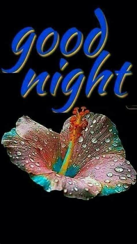 good night beautiful friendshv