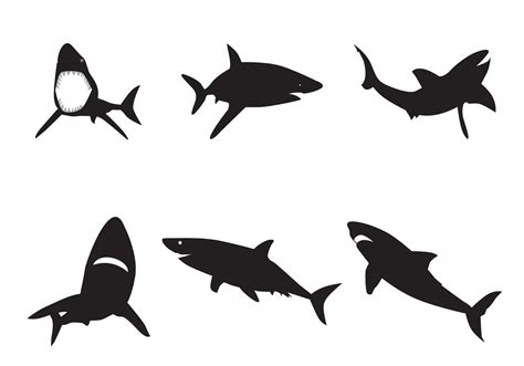 shark silhouette tattoo clipart best
