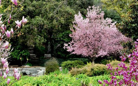Botanical Garden La Los Angeles County Arboretum And Botanic Garden Is A Classic In Socal Ecology Inhabitat