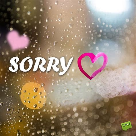 sorry quotes 30 sorry quotes quotations about apology picsmine