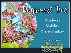 tree symbolism dogwood tree meaning symbolism tree symbolism meanings
