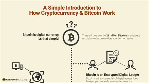 understanding bitcoin the step by step guide to ownership understanding cryptocurrencies volume 1 books infographic what is bitcoin how does bitcoin work the