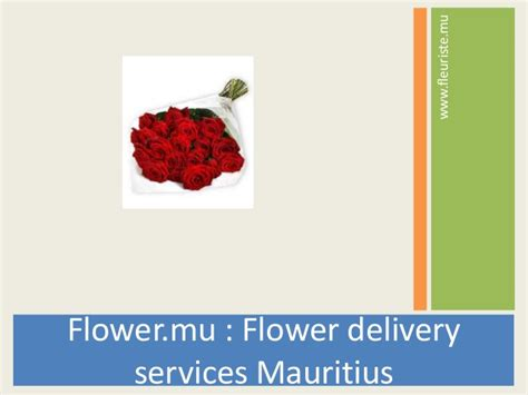 flower delivery services driverlayer search engine