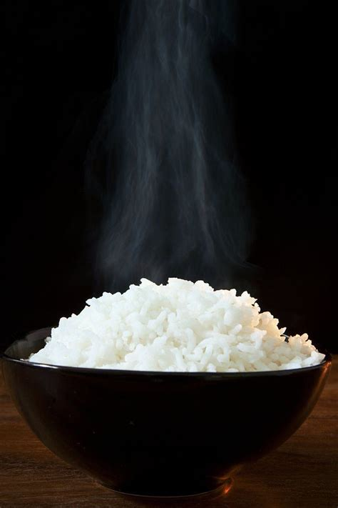 is white rice for dogs is white rice bad for you holistic squid autos post