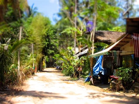 Detox Koh Lanta by Thailand Archives This American