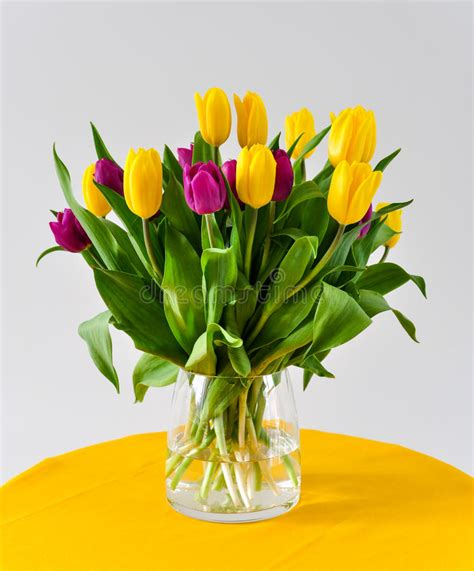 tulipani in vaso tulipani in vaso fotografia stock immagine di tabella