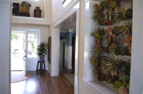 ways  including indoor plants   homes decor