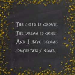 lyrics comfortably numb best 25 comfortably numb ideas on pinterest pink floyd