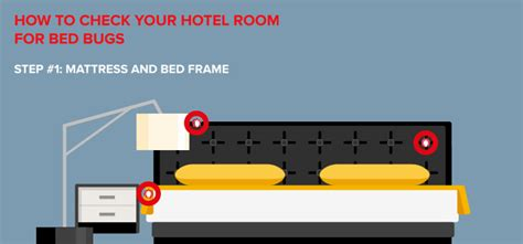 check for bed bugs 5 ways to check for bed bugs in a hotel room