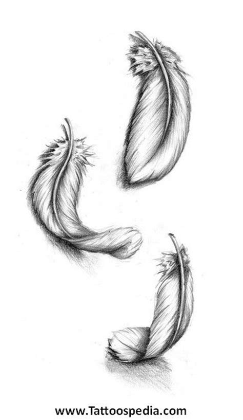 feather tattoo to draw 17 best images about feather reference on pinterest
