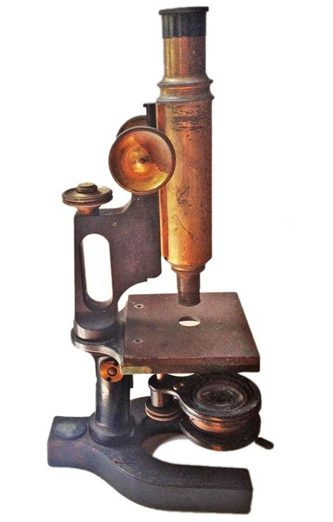 Home Floor Decor by Antique Microscope Omero Home