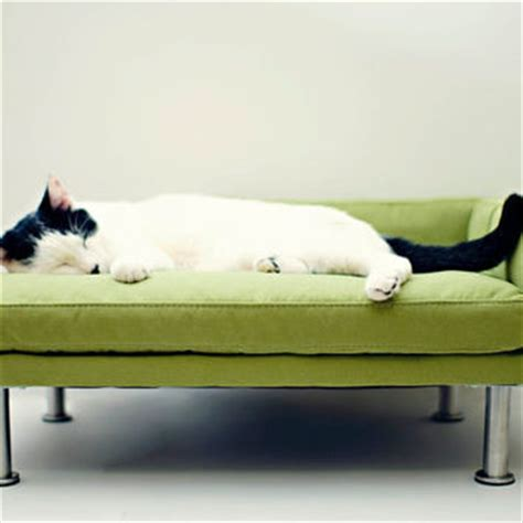 cat chaise lounge modern pet bed chaise lounge chair cat from modpet on etsy