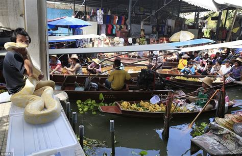 boat transport uk prices tourist boats cause traffic jam at damnoen suduak floating