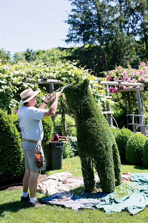 comes to narragansett bay in rhode island new - Green Animals Topiary Garden Cost
