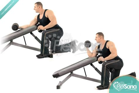 dumbbell chest workout no bench incline bench dumbbell curl